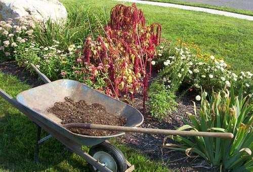 Jardin octobre jardin en octobre conseils et travaux - Que faire au jardin en septembre et octobre ...