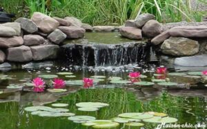 Oxygénation de l'eau d'un bassin