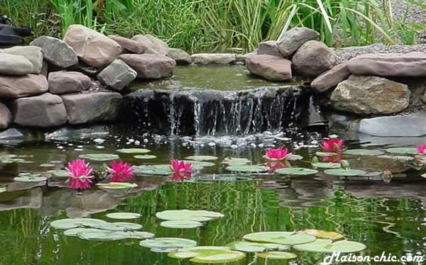 Les secrets d\'une eau claire – Astuces et bricolage