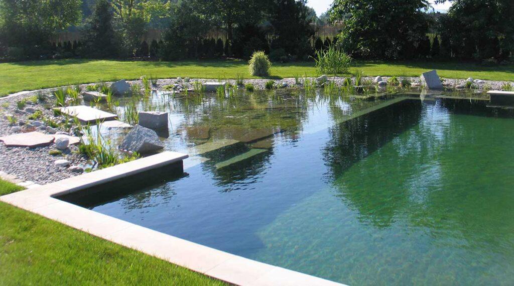 Conception des piscines naturel écologique